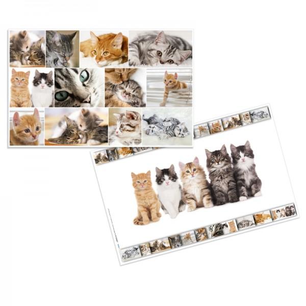 Herma Schreibunterlage 550 x 350 Katzen
